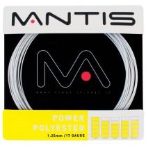 MANTIS_Power_Pol_5163eba63179e.jpg