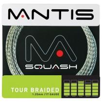 MANTIS_Tour_Brai_516400858f941.jpg