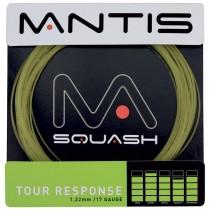 MANTIS_Tour_Resp_5163ffbd71671.jpg