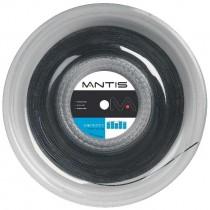 Mantis_Synthetic_5163dd40cb047.jpg